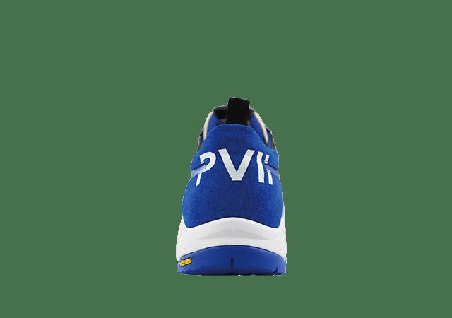 P VII BLUE 4
